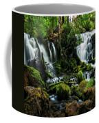 Pearsony Falls Coffee Mug