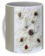Pebbles In Snow Coffee Mug by Augusta Stylianou
