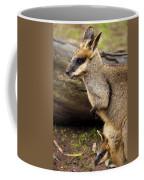 Peeking At The World Coffee Mug