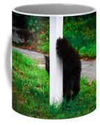 Peeking Kitty Coffee Mug