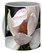 Peeking Magnolia Coffee Mug