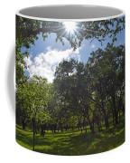 Peeping Sun Coffee Mug