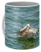 Pelecan In Flight Coffee Mug
