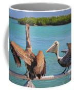 Pelecanidae Coffee Mug