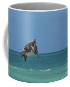 Pelican Flapping His Wings In Flight Off Aruba Coffee Mug