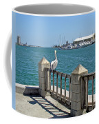 Pelican Gazing At Port Canaveral In Florida Coffee Mug