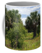 Pelican Island Nwr In Florida Coffee Mug