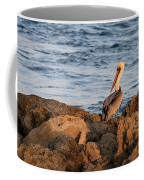 Pelican On The Rocks Coffee Mug