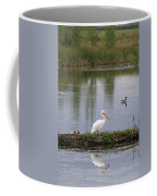 Pelican Reflection Coffee Mug
