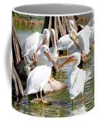 Pelican Squabble Coffee Mug
