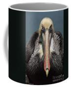 Pelican Stare Coffee Mug