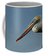 Pelican Upclose Coffee Mug