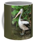 Pelican With A Bird Park In Bali Coffee Mug