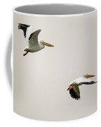 Pelicans 6498-113017-2cr Coffee Mug