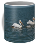 Pelicans Coffee Mug