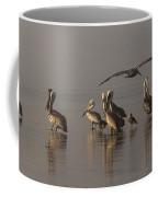 Pelicans On Beach Coffee Mug