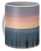Pelicans Welcome The Day Coffee Mug