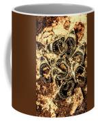 Pendants From A Shark Attack Coffee Mug