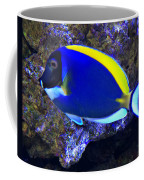 Blue Tang Fish  Coffee Mug