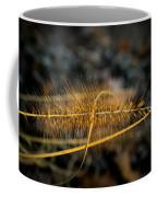 Fountain Pennisetum In Evening Sun Coffee Mug