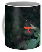 Penstemon At Havasupai Coffee Mug