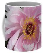 Peonie In Pink Coffee Mug