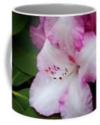 Peppermint Rhodie Coffee Mug