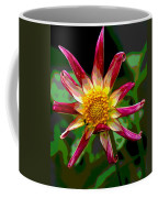 Peppermint Sunburst 2 Coffee Mug