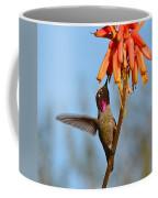 Perched Anna's Feeding Coffee Mug