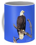 Perched Bald Eagle Coffee Mug
