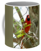 Perched Cardinal Coffee Mug