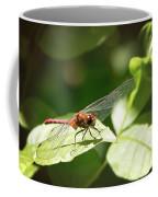 Perched Dragonfly Coffee Mug