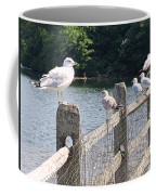 Perched Gulls Coffee Mug
