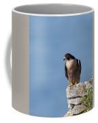 Perched Peregrine Falcon Coffee Mug