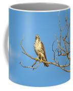 Perched Poser Coffee Mug