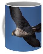Peregrine 1 Coffee Mug