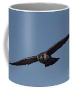 Peregrine 2 Coffee Mug