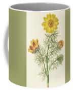 Perennial Adonis Coffee Mug
