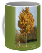 Perfect Little Tree Coffee Mug