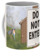 Perfect Nesting Box 2 Coffee Mug