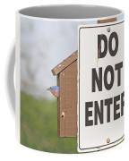 Perfect Nesting Box Coffee Mug