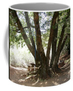 Perfect Picnic Tree Coffee Mug