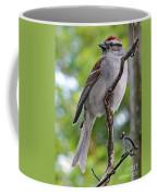 Perfect Profile - Chipping Sparrow Coffee Mug