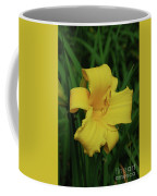 Perfect Yellow Daylily Flowering In A Garden Coffee Mug