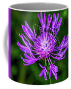 Perfectly Purple Coffee Mug