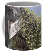 Pergola And Vines Coffee Mug