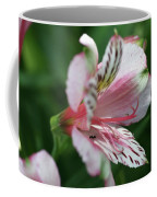 Perivian Lily With Ant Coffee Mug