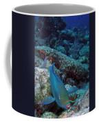 Perky Parrotfish Coffee Mug