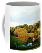 Perry Reflection Photo Coffee Mug