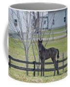 Perry's Coat Standing Coffee Mug